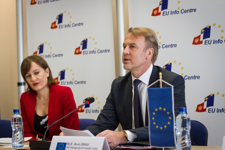 Aivo Orav (source: EU Delegation to Montenegro)
